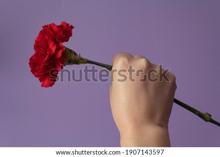 Woman with raised fist holding red carnation against purple background. Freedom, Revolution and April 25 concept Foto stock ©