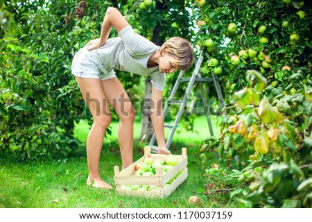 Woman with short hair with a strong pain in low part of the back while collecting apples in the garden. Medicine, healthcare and people concept #1170037159