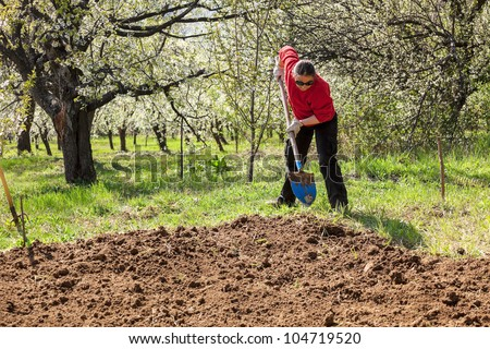 Woman working in garden, shoveling