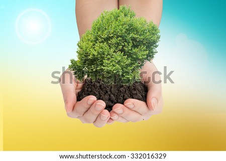 Womans hands holding tree with ground on colorful background