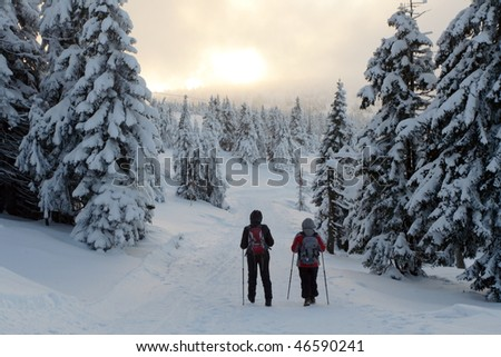 Womans on nordic walking trail in winter mountains in Poland
