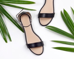 Women beach black leather flat sandals on white background framed with tropical leaves