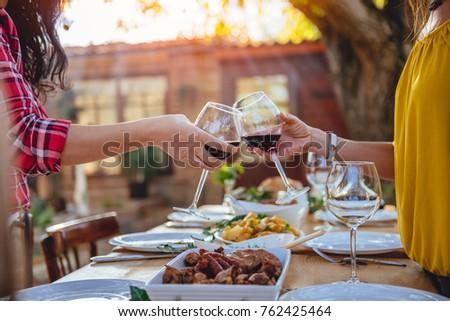 women friends toasting red wine ...
