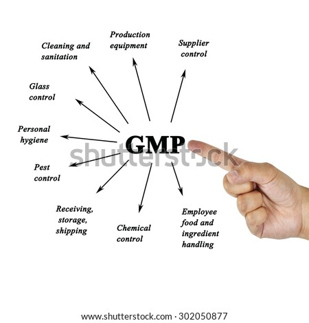 how to become a certified gmp auditor