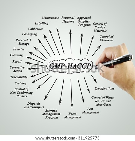 Women hand writing element GMP-HACCP for use in