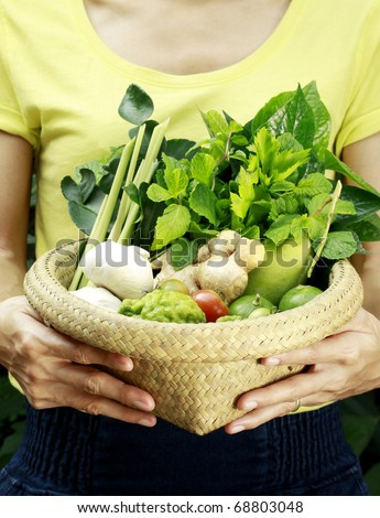 women hands holding a basket full of vegetables