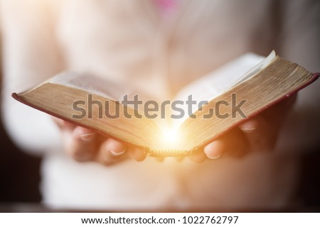 Women reading the Holy Bible.,Reading abook.