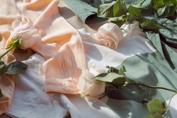 women's clothing in soft pastel shades is scattered and decorated with beautiful roses of a delicate pink-orange color in the bright sunlight