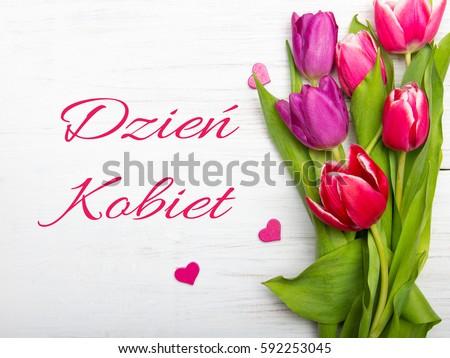 Women's day card with Polish words DZIE? KOBIET. Tulip flower small hearts on white wooden background. Zdjęcia stock ©