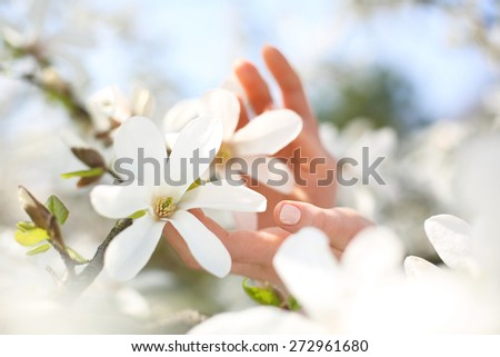 Women\'s hands, natural beauty. Female hands on a background of white magnolia flowers