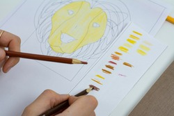 Women's hands paint a lion on a white sheet with a black outline with colored pencils.