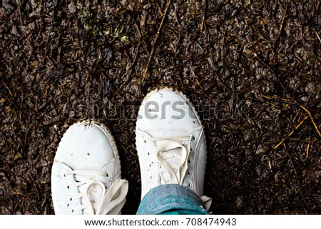 Women's legs in white sneakers stand in the mud. Autumn mud. Women's legs in white sneakers stand in the mud. Autumn mud. #708474943