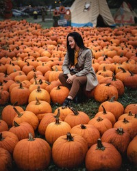 Women sin on the pumpkins. Pumpkins In The Field At Sunset - Thanksgiving And Fall Background