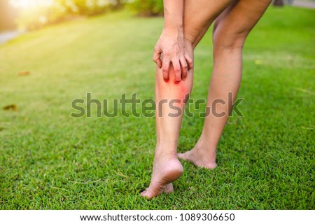 Photo of  Women with his feet, itching on the lawn caused by insect bites and stings/health and medical view and devising concepts.
