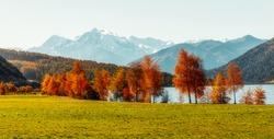 Wonderful Alpine Landscape in Sunny day. Colorful Autumn scene.