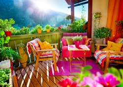 wonderful comfortable balcony with lots of flowers and herbs