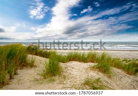 Wonderful dune beach on the North Sea island Langeoog in Germany with sand, dune grass, blue sky and clouds on a beautiful summer day; very healthy and quiet environment in Europe Stock photo ©
