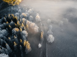 Wonderful foggy nature landscape. Frosty trees illuminated by the first light at early morning in the wilderness. Asphalt road through the forest. Winter bakground. Aerial view.