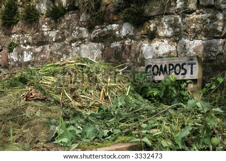 Wonderful old grass and weeds make up a compost heap