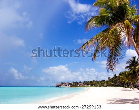 Wonderful scenery of tropical panorama with palms, beach and azure sea