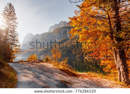 Wonderful Sunny Day. Amazing Hight mountain Lake Vorderer, Gosausee.  Autumn Colorful Trees Glow Under Sunlight. Populap Touristic Location. impressively beautiful sunset. Picture of wild area.