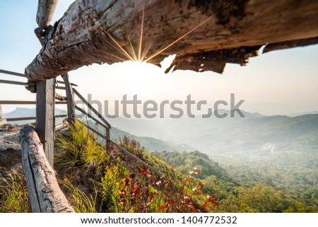 wonderful sunset through paling with golden grass on top of the mountain in chiangrai, Phuchidao