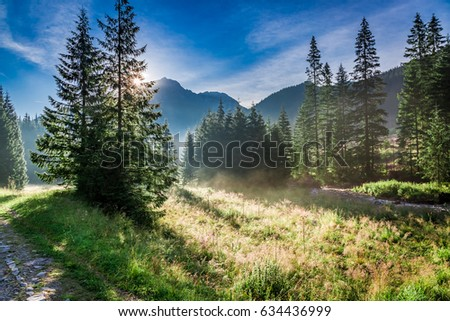 Wonderful valley in Tatra Mountains at sunrise, Poland, Europe - Shutterstock ID 634436999