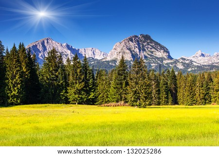 Wonderful view to mountains in the national park Durmitor in Montenegro, Europe. Beauty world.