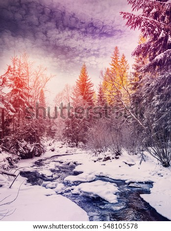 Wonderful winter landscape. snow covered pine tree over the mountain river under sunlight. colorful sky. wonderful, amazing view. christmas holiday concept. picturesque amazing scene. instagram effect #548105578
