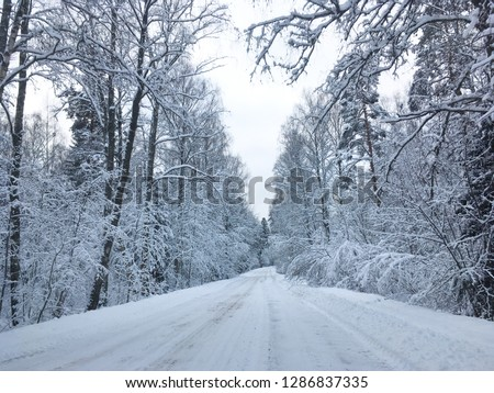 Wonderful wintry landscape. Frosty trees. Picturesque nature scenery. Creative artistic image. Nature background. Winter holiday day. #1286837335