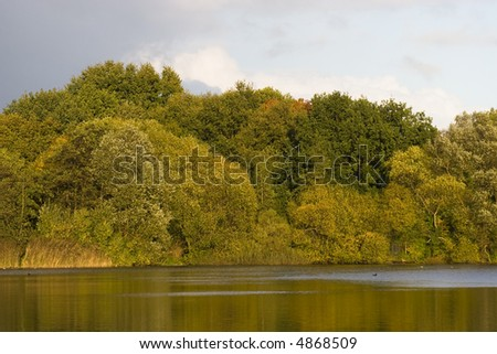 Wood and lake - stock photo