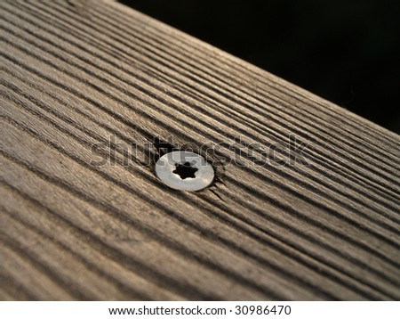wood and torx screw
