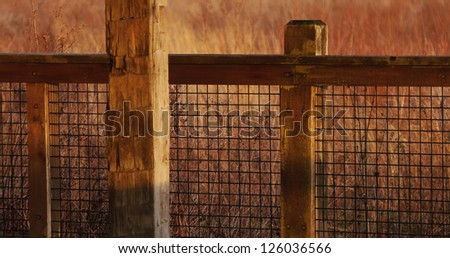 Wood and wire railing in wetland habitat
