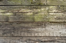Wood background texture. Old wooden fence background.