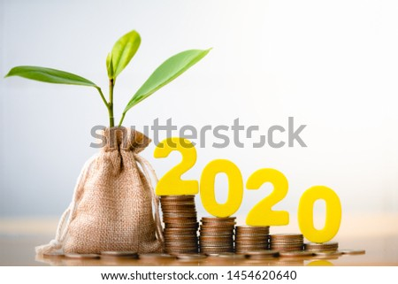 Wood block 2020 and Coins in sack with small plant tree. Pension fund, 401K, Passive income. Investment and retirement. Business investment growth concept. Risk management. Budget 2020.