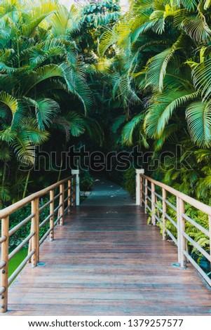 Wood boardwalk with railing along grass leading into jungle #1379257577