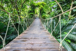 Wood bridge with rope for walking in the garden