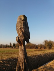Wood carved owl, Henlow Bedfordshire