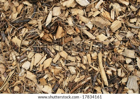 difference between wood chips and mulch 1