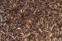 Wood chip bark chippings having been shredded for use as a garden mulch by the lumber timber industry which can be used as an abstract texture background, stock photo image