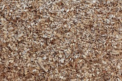 Wood chip chipping or  shredded mulch material texture background