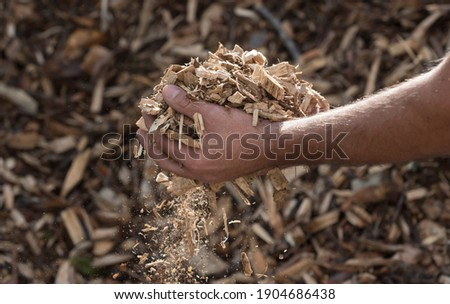 wood chips as a renewable heating fuel and energy source ストックフォト ©