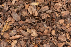 Wood chips texture, wooden biomass background close up