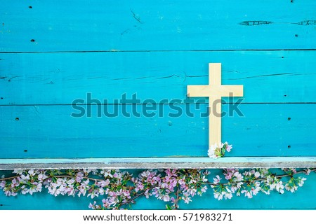 Wood cross hanging on antique rustic wooden background over white and pink spring flowers; Easter, religious and spiritual background with teal blue copy space - Shutterstock ID 571983271