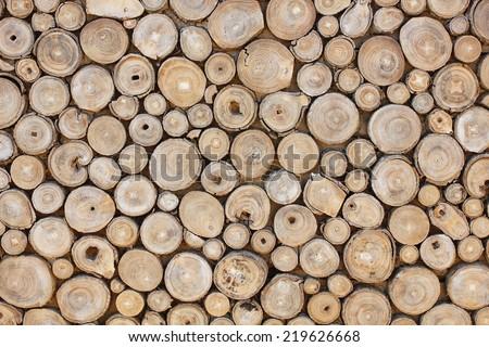 Wood cross slice. Stack of brown circle wood