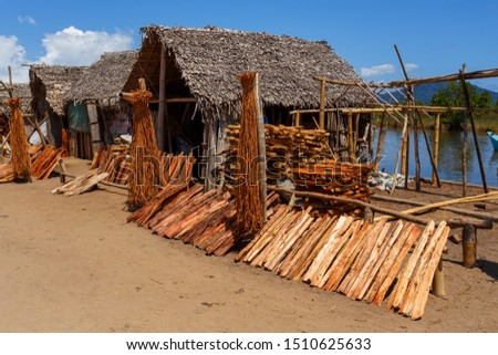 wood drying in the sun in front of a traditional madagascar house, Maroantsetra, Madagascar