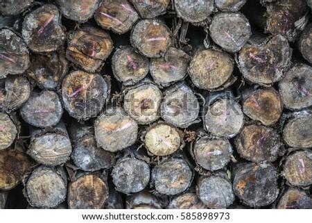 Wood factory,wood shop #585898973