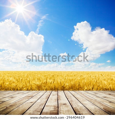 Wood floor over yellow wheat field under nice sunset cloud sky background #296404619