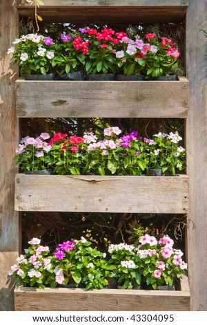 Wood flower boxes