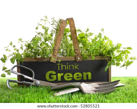 Wood garden box with assortment of herbs and tools - stock photo